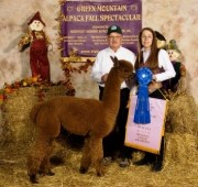 Green Mtn Alpaca Fall Spectacular - Reserve Champ